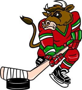 Pictured: bullhockey.